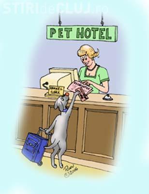 Hotelurile pentru caini si pisici sunt pline la Cluj