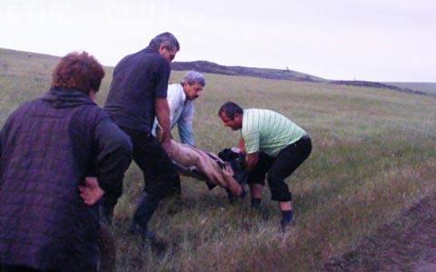Un adolescent din Cluj a fost ucis de trăsnet, în timpul furtunii de luni seara