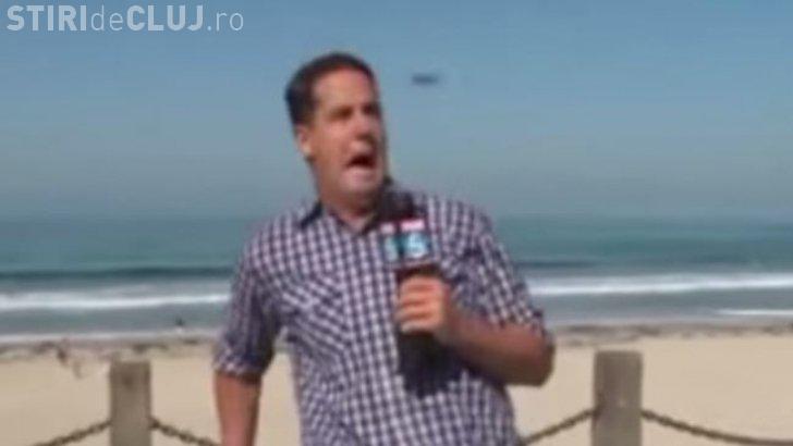Reacția amuzantă a unui reporter speriat de un gândac. Totul a fost transmis live VIDEO