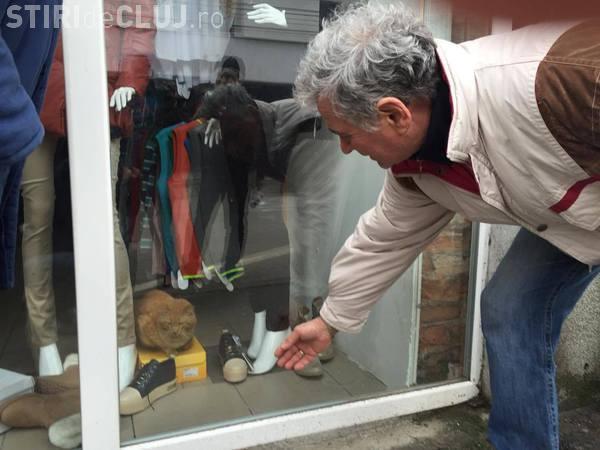 O pisică este captivă într-un magazin sigilat de ANAF. Pompierii ezită să intervină