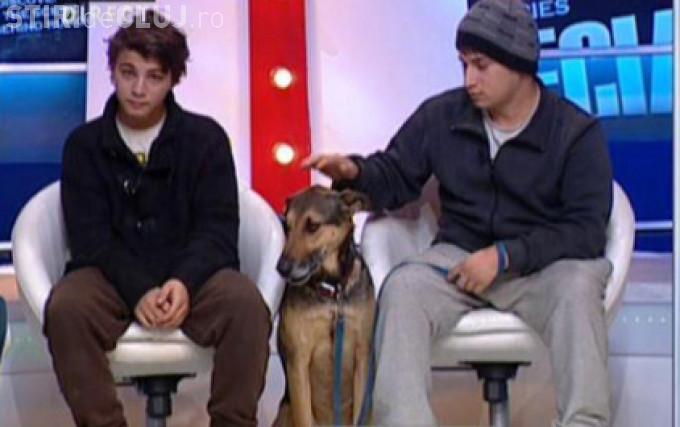 Gigi Becali îi dăruiește o casă băiatului care cerșește cu un câine