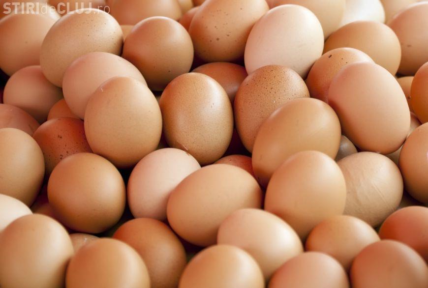 Razie la vânzătorii de alimente la Cluj și în țară. Polițiștii vizează în special comerțul de ouă