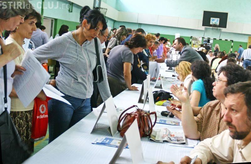 """AJOFM Cluj organizează """"Bursa locurilor de muncă"""", în cadrul """"European Employers Days"""". Când va avea loc"""