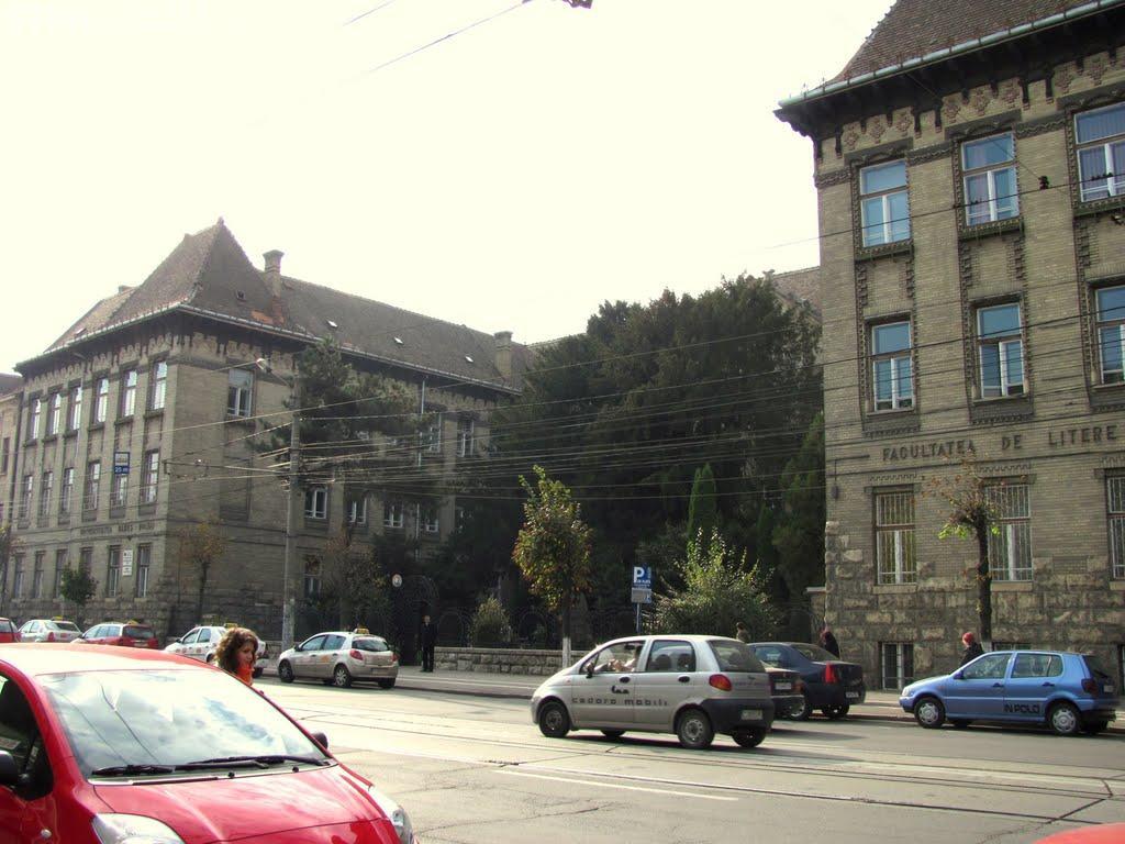 Facultatea de Litere din cadrul UBB, între primele 150 de facultăţi din lume