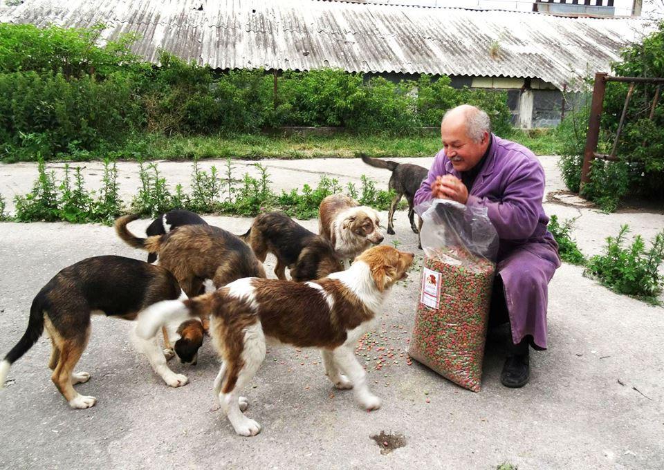 Cei 1000 de câini îngrijiți de Radu Țermure vor fi evacuați. Clujeanul are nevoie de ajutor URGENT