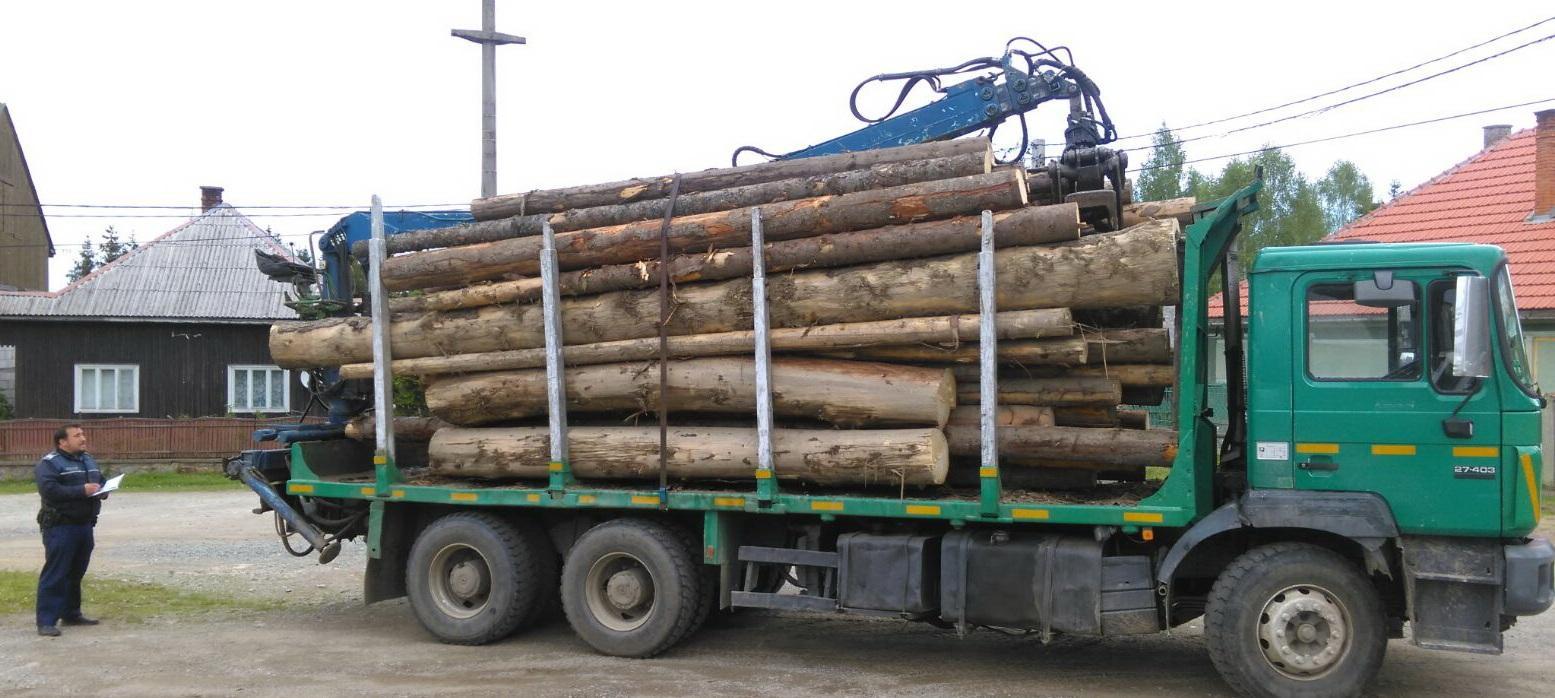 Captură de lemn la Cluj. Polițiștii au confiscat un camion plin cu lemne FOTO
