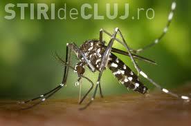 Virusul Zika a ajuns în România! Ministerul Sănătății a confirmat primul caz