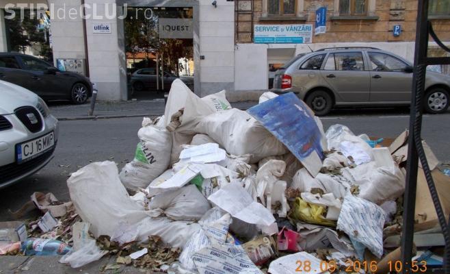 Rampe de gunoi ilegale, depistate prin tot Clujul. Polițiștii locali au împărțit amenzi de aproape 10.000 lei
