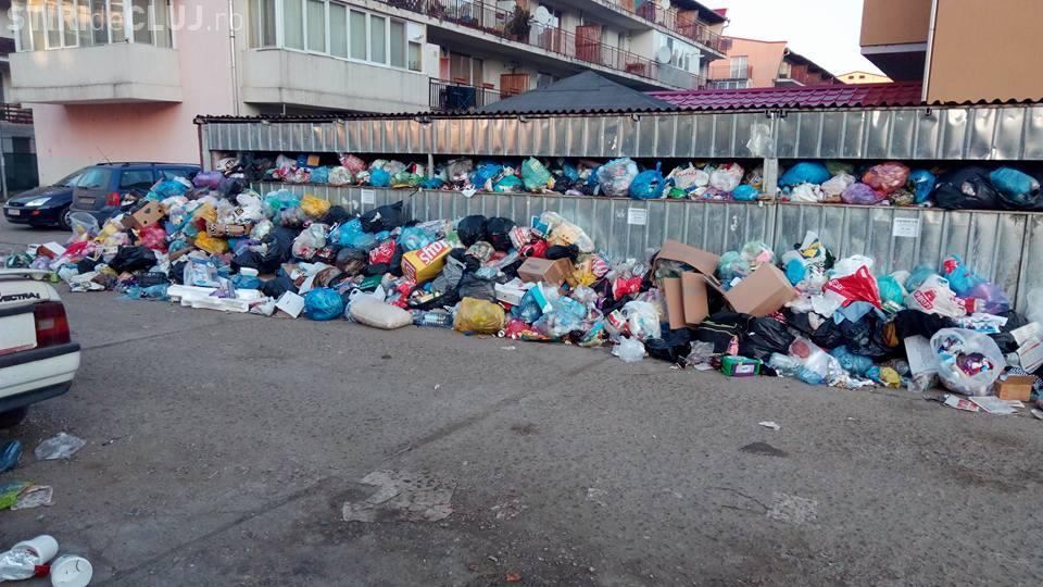 Horia Șulea: Floreștiul nu mai are firmă care să ridice deșeurile. PSD, ALDE, PMP și UDMR sunt de vină