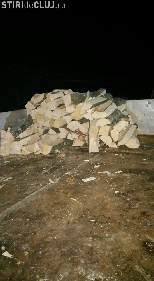 11 mașini confiscate în Cluj pentru că transportau lemne fără acte