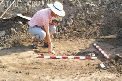 Cercetătorii UBB descoperă o nouă familie de reptile mezozoice din Transilvania (România)