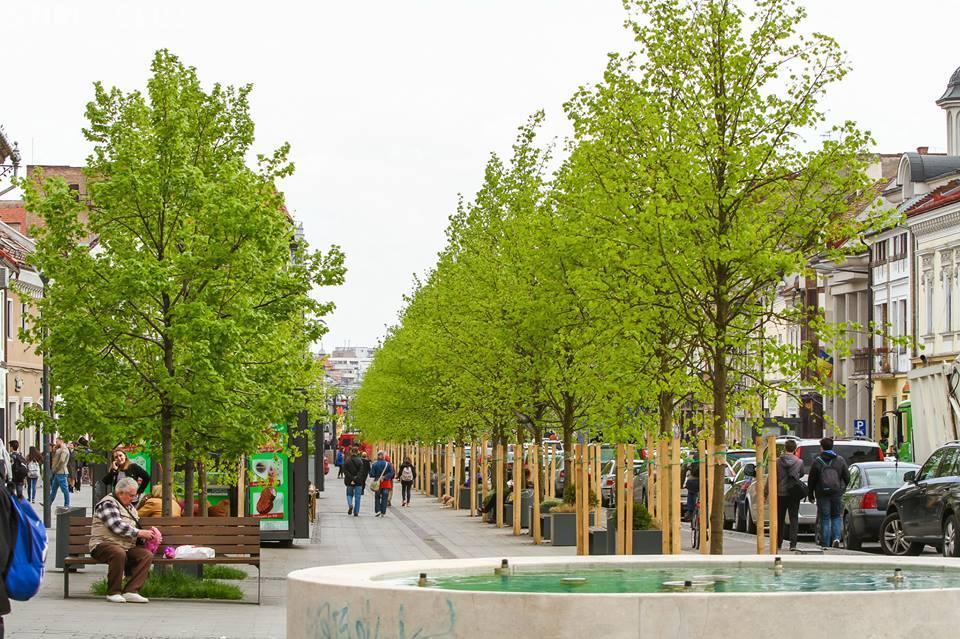 Oradea este orașul cu cel mai bun acces la facilități de recreere. Pe ce loc este Clujul
