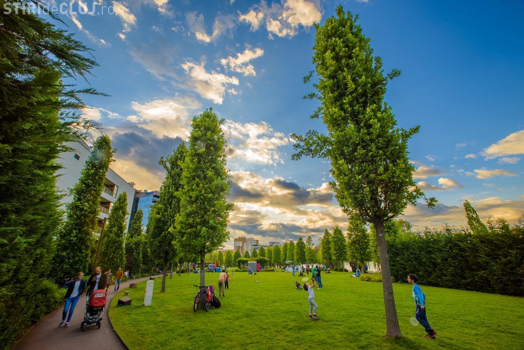 Trei seri de picnic și cinema în aer liber, la Caravana FIlmelor NexT, în Iulius Parc
