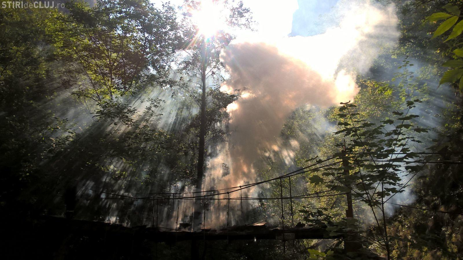 Au dat foc podului 3 din Rezervația Naturală Cheile Turzii - FOTO