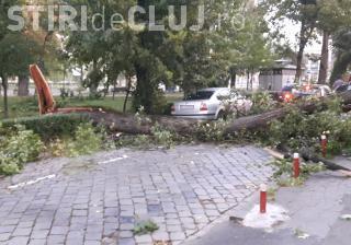 ISU Cluj a prezentat bilanțul furtunii de duminică: Peste 20 de mașini avariate și 5 persoane rănite