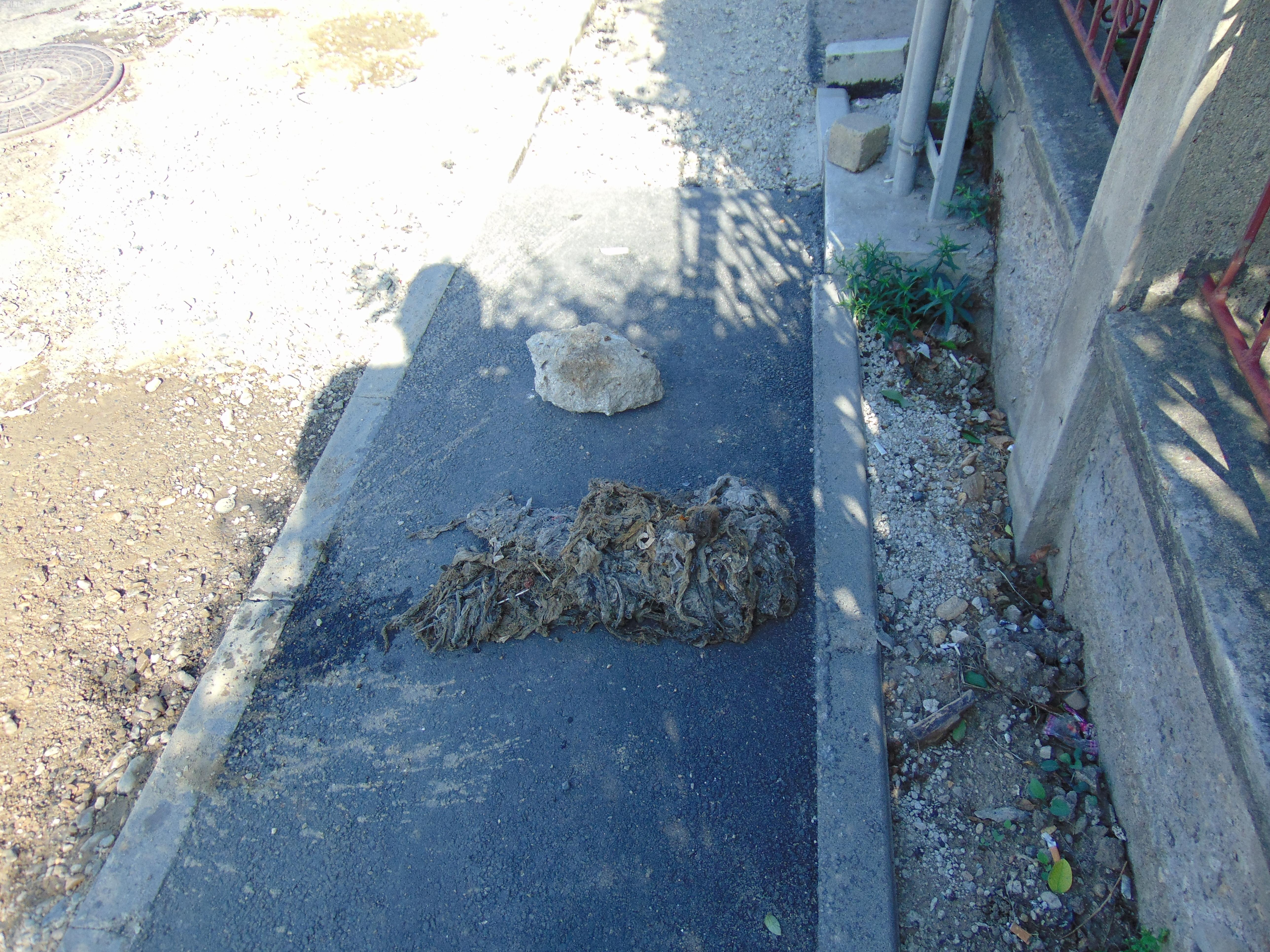 Cârpe, pene și un bolovan aruncat în canalizarea din Florești - FOTO