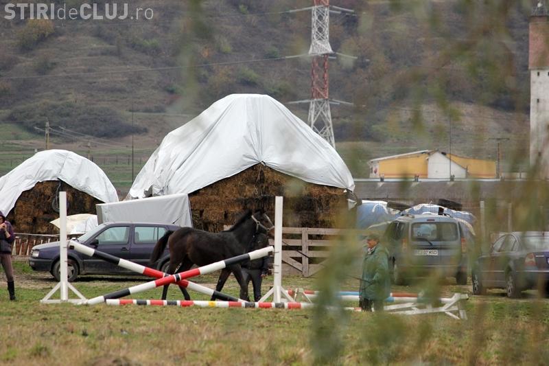 O fermă de cai din Apahida trebuie demolată. Curtea de Apel Cluj a dat sentința finală