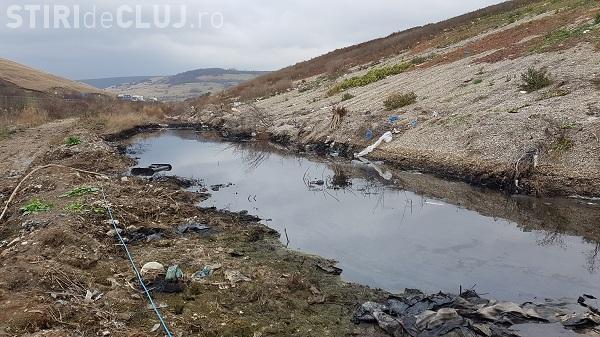 Garda de Mediu a aplicat o amendă de 80.000 de lei pentru dezastrul de la Pata Rât