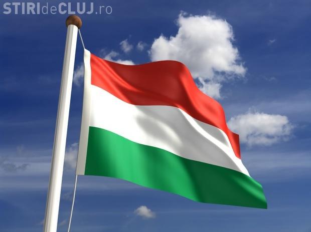 Primarul din Sfântu Gheorghe somat de prefectură după ce a arborat doar steagul Ungariei în tot orașul