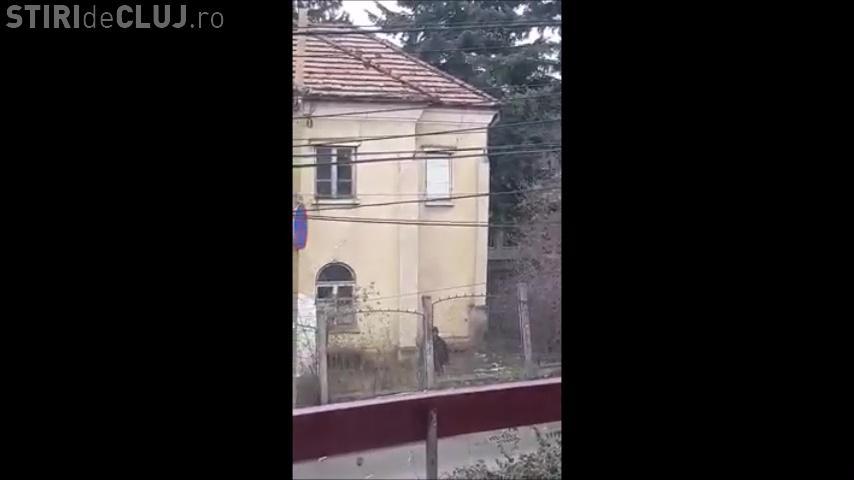 Un nebun aruncă cu bolovani în mașini în Cluj-Napoca. Unde s-a filmat - VIDEO