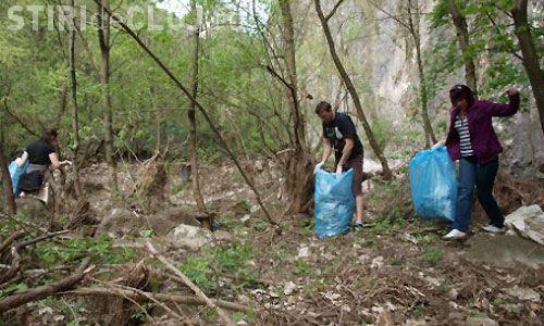 Acțiune de ecologizare a Cheilor Turzii