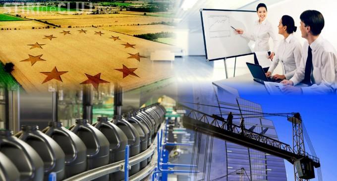 Investiţie iniţială în cadrul societăţii Bonida Import Export prin extinderea capacităţii de producţie (P)