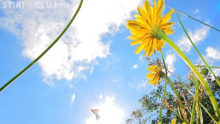 Vreme de vară, în Transilvania, în următoarele săptămâni! Ce anunță ANM