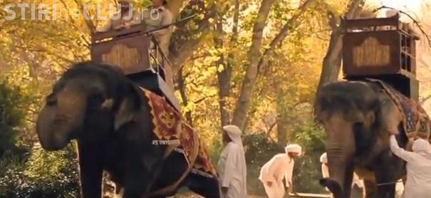 """HBO folosește elefanți reali pentru serialul """"Westworld"""". Unul dintre animale plângea în timp ce i se aplicau electroşocuri"""