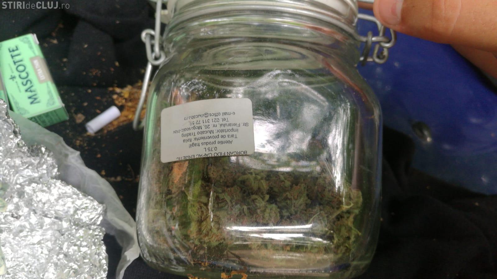 Tineri prinși cu droguri asupra lor, în Pădurea Hoia-Baciu. Jandarmii au ridicat un borcan plin cu muguri de cannabis FOTO