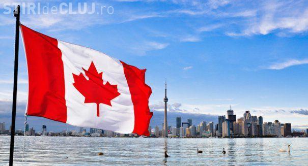 Senatul Canadei a legalizat consumul de marijuana în scop recreţional