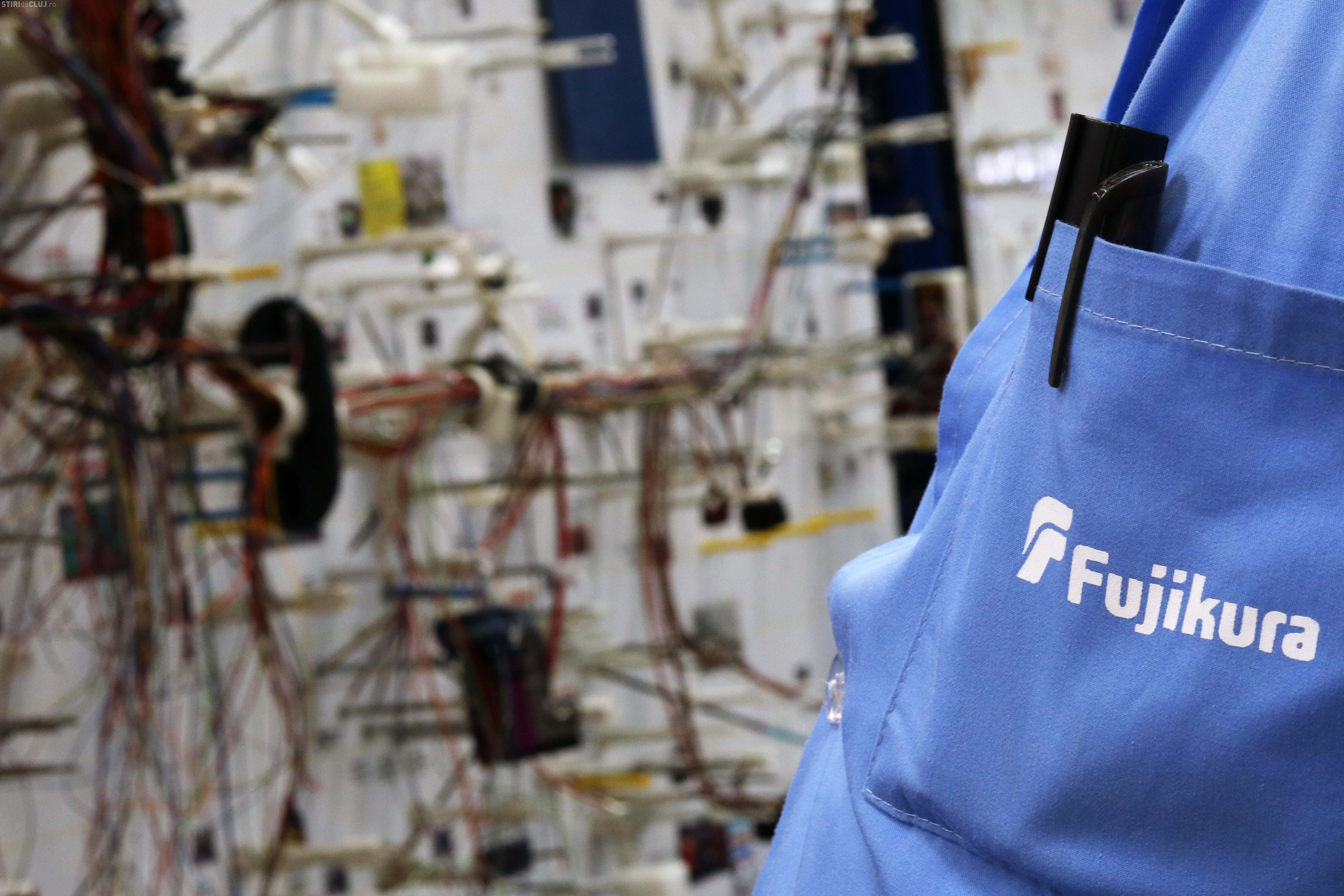 Angajații români de la Fujikura produc cablaje pentru mașinile electrice (P)