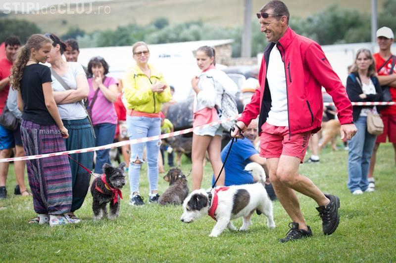 Expoziție pentru câini din rasa comună, la Vlaha