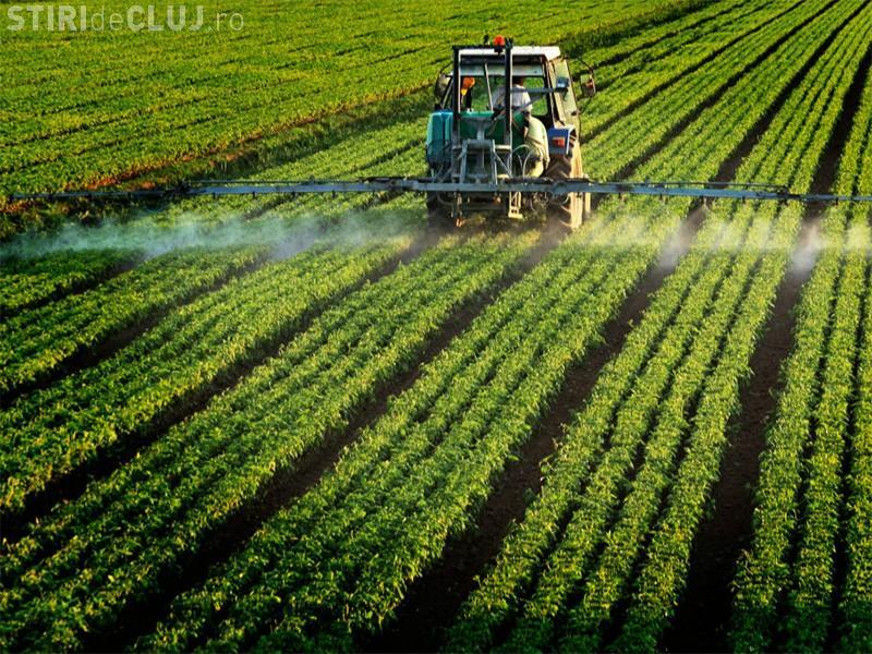 România, locul 5 în topul statelor UE cu cele mai mari vânzări de pesticide