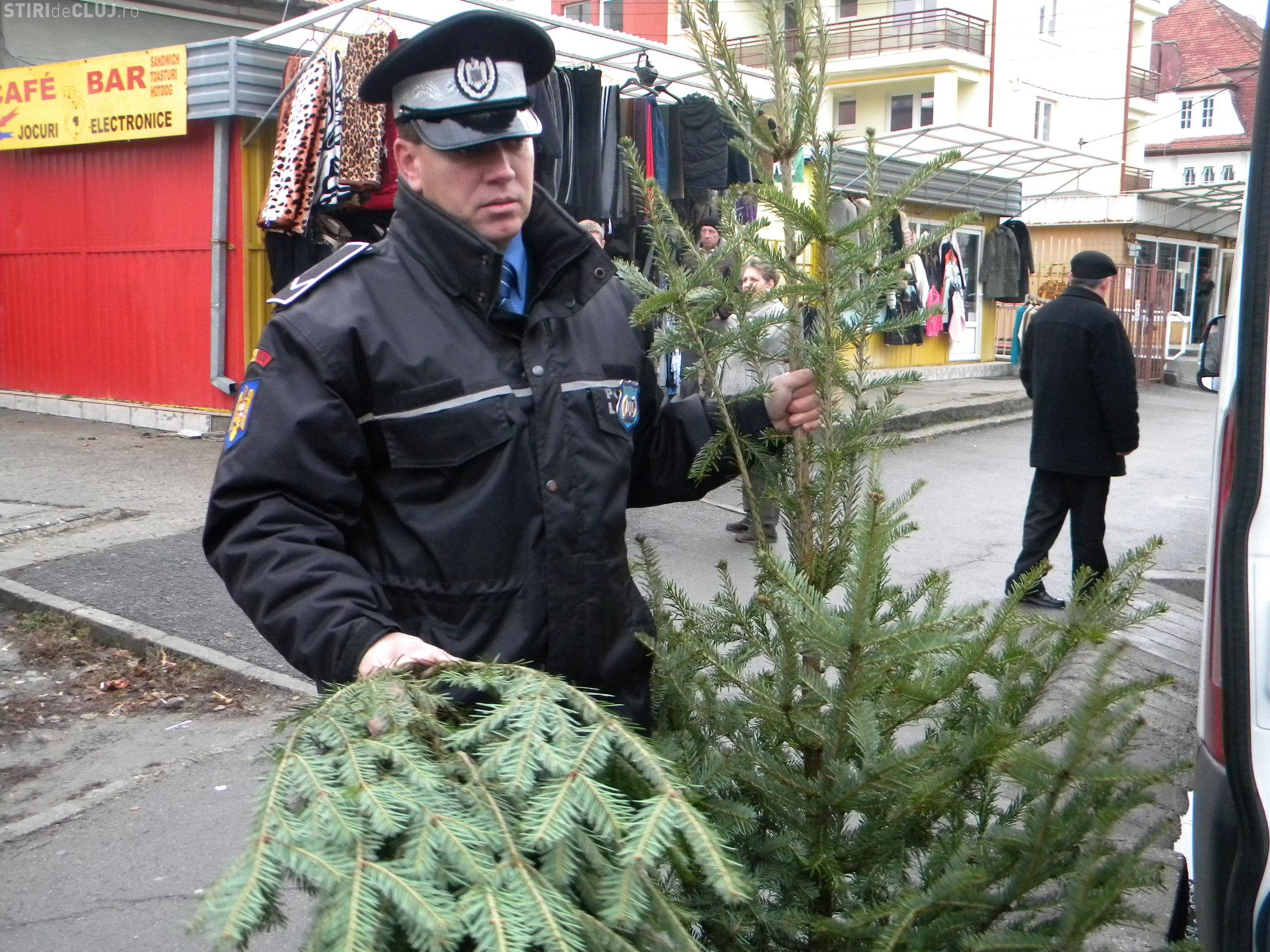 Politia locala a confiscat brazi de Craciun si mii de petarde
