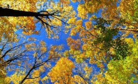 PROGNOZA METEO până pe 29 octombrie: Cum va fi vremea în Transilvania
