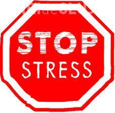 Psihologii clujeni tratează stresul prin iPhone şi iPad. Aplicația PsyPills a fost creată la UBB