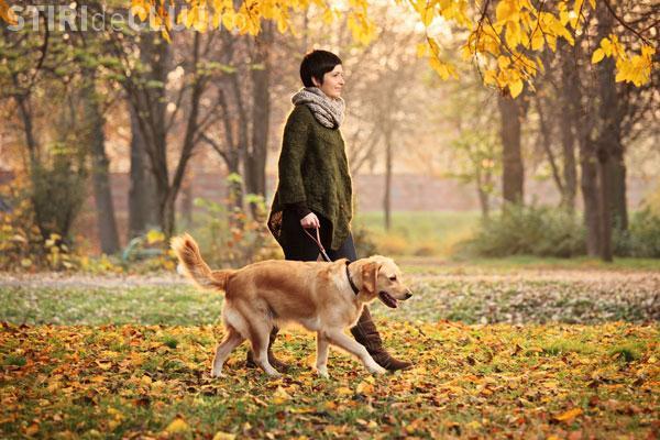 Beneficiile plimbării alături de animalul de companie. Vezi ce spun cercetătorii