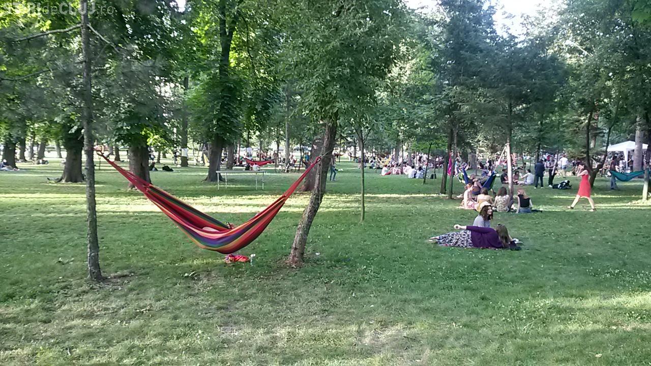 JAZZ IN THE PARK 2014 - Relaxare și muzică bună, dar cam puțini oameni  - VIDEO