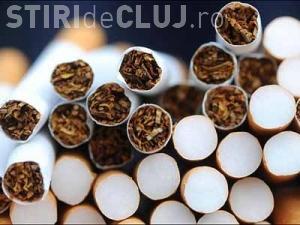 Clujeni prinși cu un transport de țigări de contrabandă. Le-au fost confiscate peste 36.000 țigarete