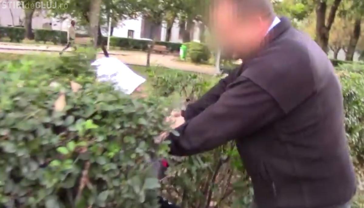 Un clujean a filmat o FARSĂ și a fost luat la BĂTAIE. Un șofer l-a aruncat în BOSCHEȚI - VIDEO