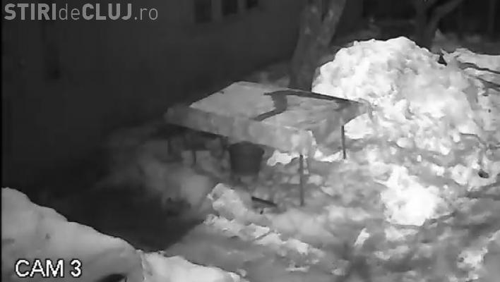 Un meteorit a explodat deasupra României. Imaginile au fost surprinse de camerele de supraveghere - VIDEO