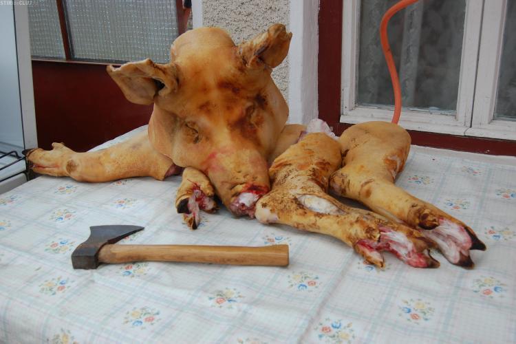 "Porcul ""taranesc"" readus in lumina reflectoarelor de criza economica"