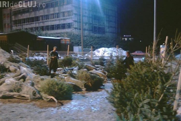 Zeci de brazi nevanduti au fost abandonati la Cluj
