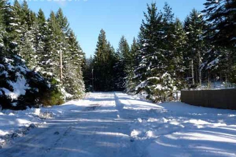 Zapada de 8 centimetri pe drumurile judetene