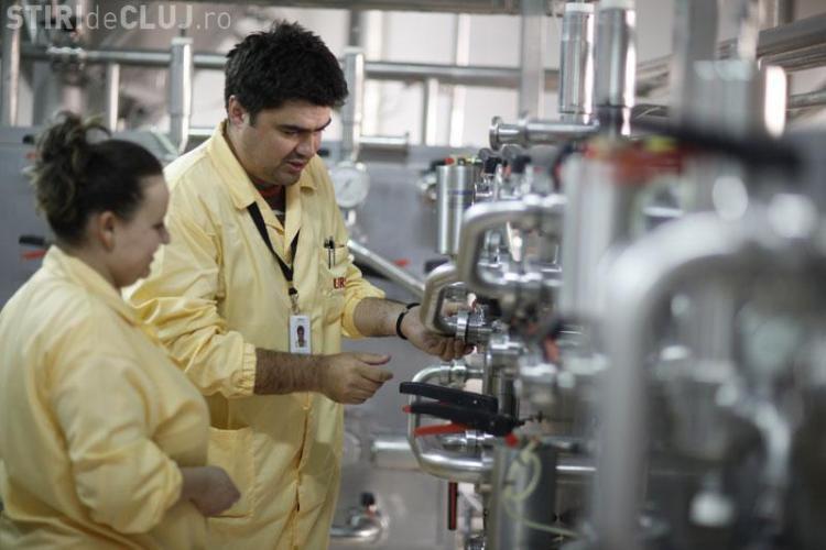 20 % din angajatii fabricii de bere URSUS Cluj, in somaj tehnic
