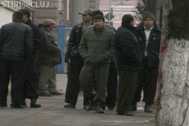 Zeci de rromi din Salaj care si-au cumparat permise de conducere din Ungaria, audiati de DNA Cluj