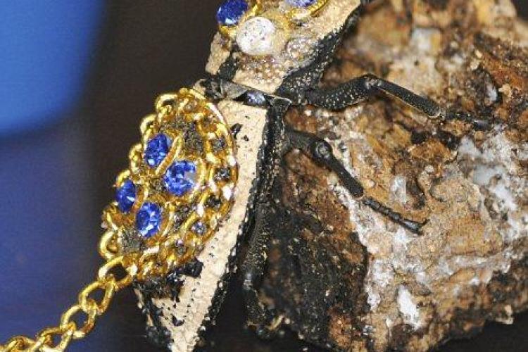 Socant! Vamesii au oprit o femeie care purta, sub forma de brosa, un gandac viu incrustat cu pietre pretioase