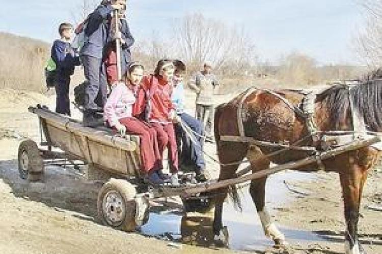 Scoala din Suceagu se inchide. Elevii vor fi adusi zilnic 20 de km la un liceu de fite din Cluj-Napoca