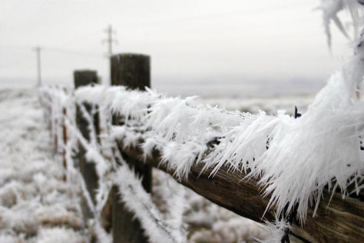 -21 grade Celsius in aceasta dimineata la Cluj