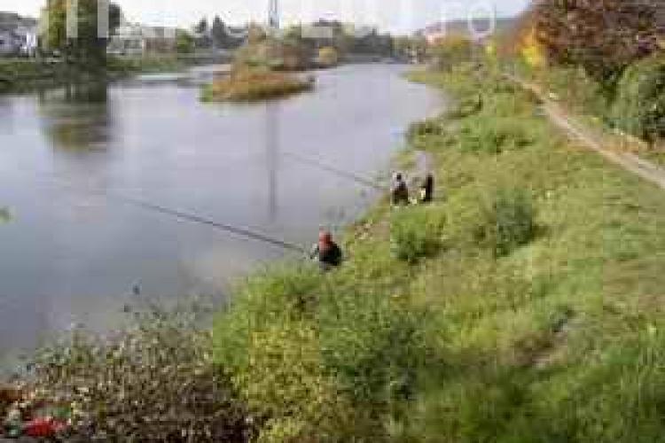 Parcul Rustic Ecologic, amenajat de maine, langa podul Garibaldi
